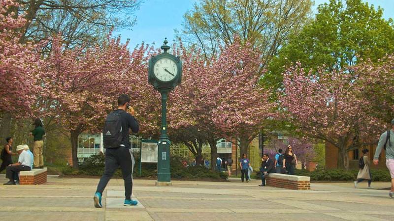 Spring Campus B-Roll