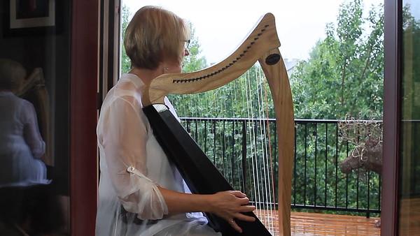 DT Retirement Harp Video