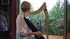 Carnelian by Anne Crosby Gaudet