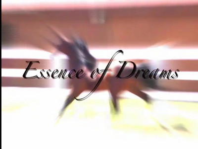 Essence of Dreams Sales Promo