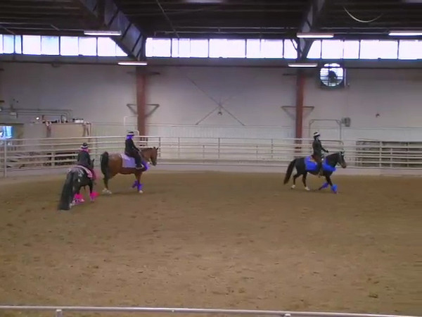 Kaliber Stables Drill Team 2007 Pt. 2 of 2