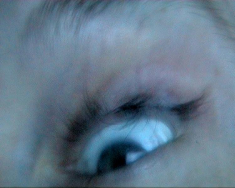 Eyedience, still, 2009