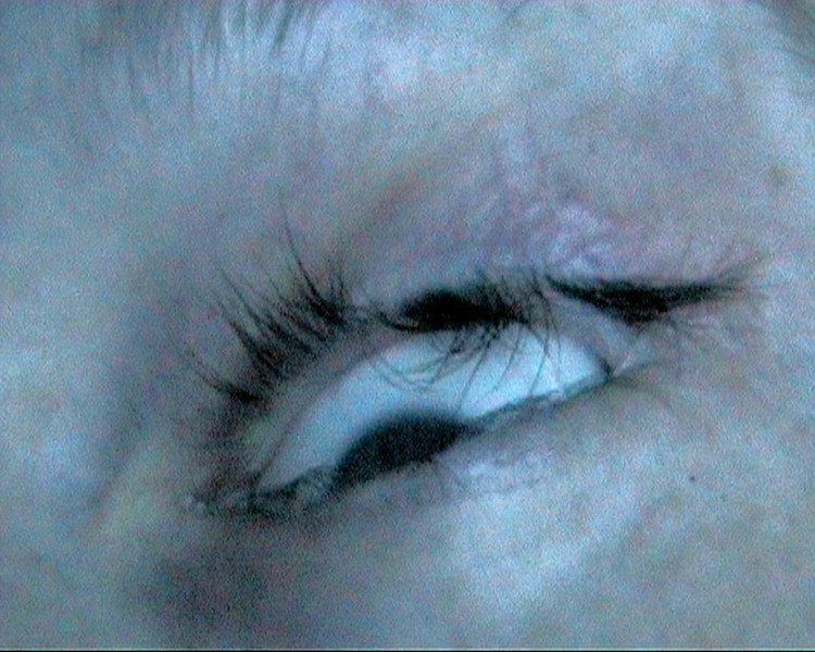 Eyedience, still, 2009