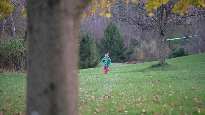 Hudson Leaf Jumping