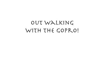 GOPR0034