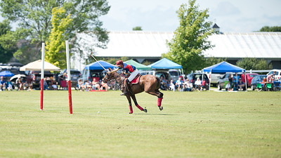 Milwaukee Polo Club 2016