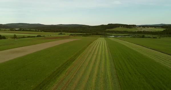 Östansjösjön och Gottne från ovan -  Aerial: flight over a mown meadow towards a lake and a village