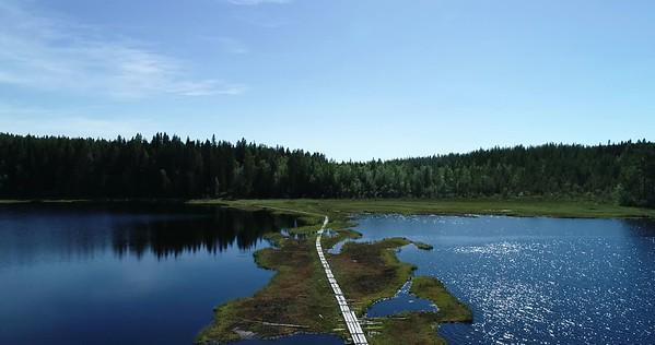 Bodsjön från ovan -  Aerial: flight over a wooden footbridge leading over a lake
