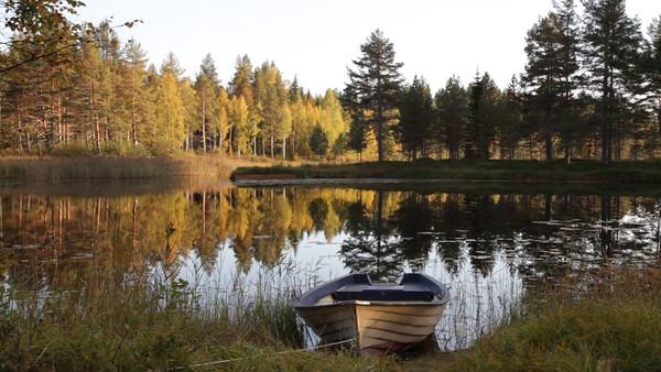 Myckelgensjösjön på hösten -  Lake with rowing boat