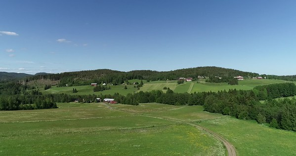 Midsommarlandskap med blomsterängar -  Aerial: flight over a lush green landscape with farm houses, meadows and woods