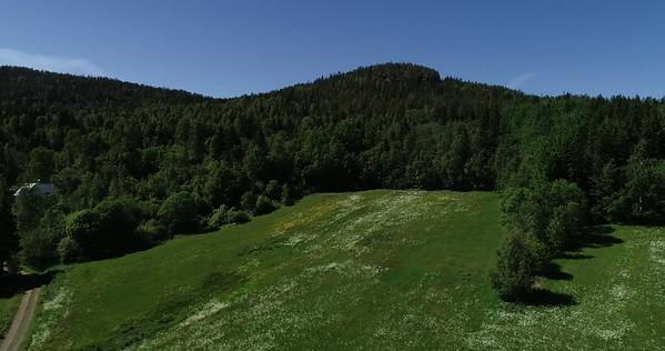 Midsommarlandskap med blomsterängar -  Aerial: full circle pan ove a lush green summer landscape