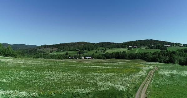 Midsommarlandskap med blomsterängar -  Aerial: flying over a country lane towards a village in a lush green landscape