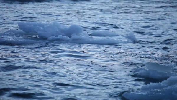 Isflak på havet -  Ice floes floating and crashing against each other on ocean waves