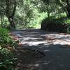Old Mine Road