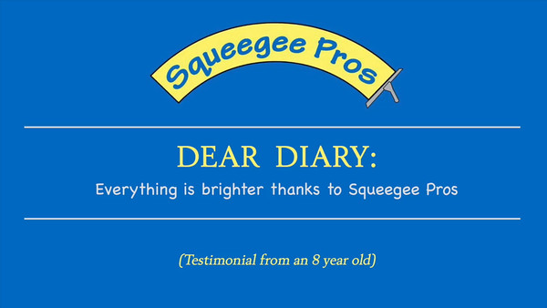 SqueegeePros