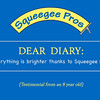 Web commercial for Squeege Pros