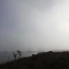 Pensacola Beach Fog