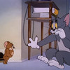 Tom and Jerry - Cover Photo