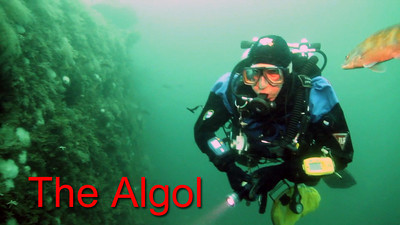 The Wreck of the USS Algol, 20 miles off the New Jersey shore.