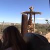 Alana Feeds the Giraffe