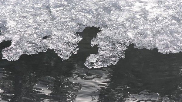 Isflak på havet - A sheet of ice is floating on the sea, slowly bobbing on the small wavelets.