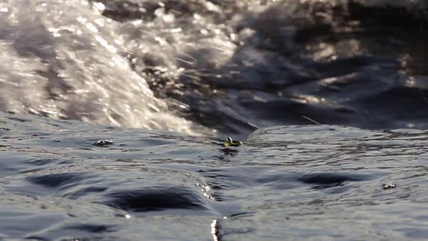 Vågor i närbild -  Waves rolling onto a rocky coast