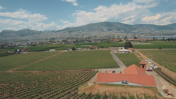 Meet Fred and Alex Farina of Agenda on 45th Estate Winery