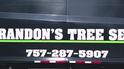 Tree Service Trailer