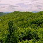 Western North Carolina Springtime