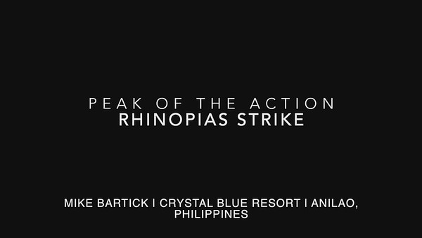 Rhinopias strike