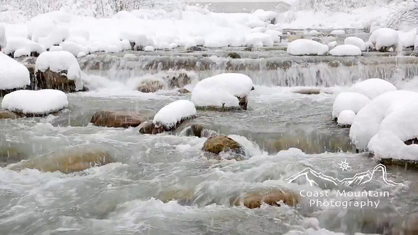 The Fitzsimmons Creek flowing through Whistler during a snow storm with snow covered rocks. Stock video footage by Mitch Winton - coastphoto.com