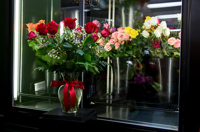 Valentines Day Promo_020