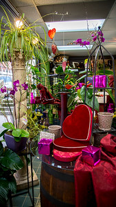 Valentines Day Promo_024