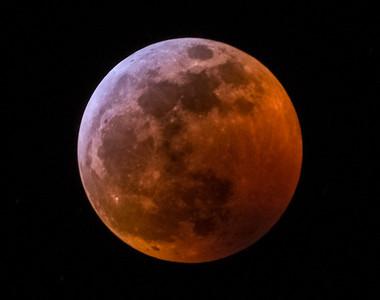 Super Blood Wolf Moon Eclipse, Denver, Colorado (1/20/2019)