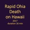 Rapd Ohia Death
