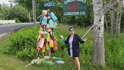 Owl's Head Lobster Company_mp4