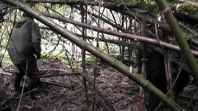 2014 Gorilla Trek Rwanda