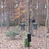VIDEO:  Busy Backyard Feeder - 11/6/13