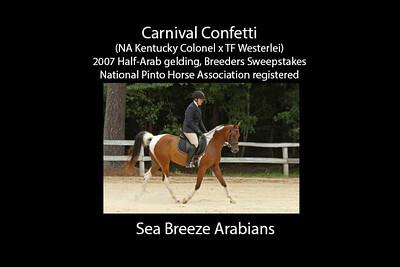CarnivalConfetti