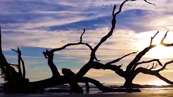 Driftwood Beach - Time Lapse