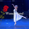 Wonderland Promo