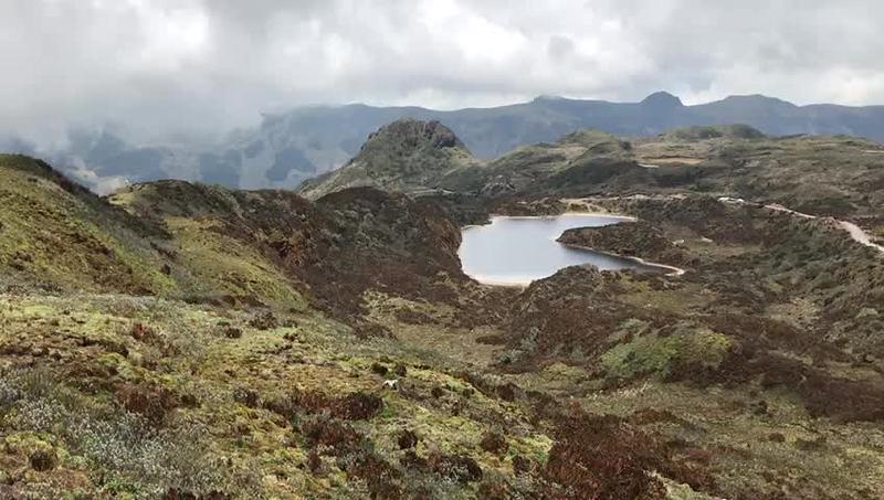Cayambe - Coca Reserve