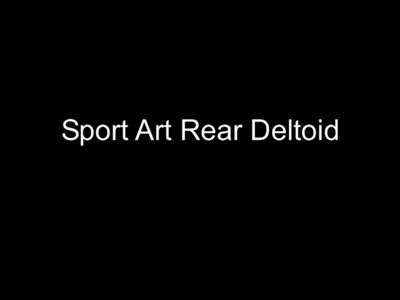 Sport Art Rear Deltoid