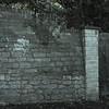 Garden Wall film