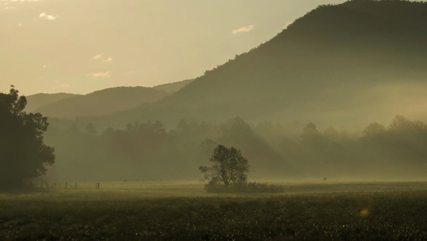 Cades Cove, Late Summer, 2012