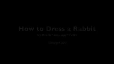 Grumpy Dressing Rabbits - Wi-Fi