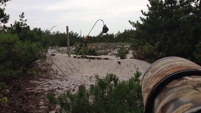 Fire Island Water Drip, 2014