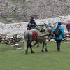 Zanskaris leaving Zanskar Sumdo heading to Manali (video by Jochen)