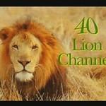 Lion Channel Tag 2005