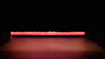 Principals Variations, Black Swan Pas de Deu from Swan Lake